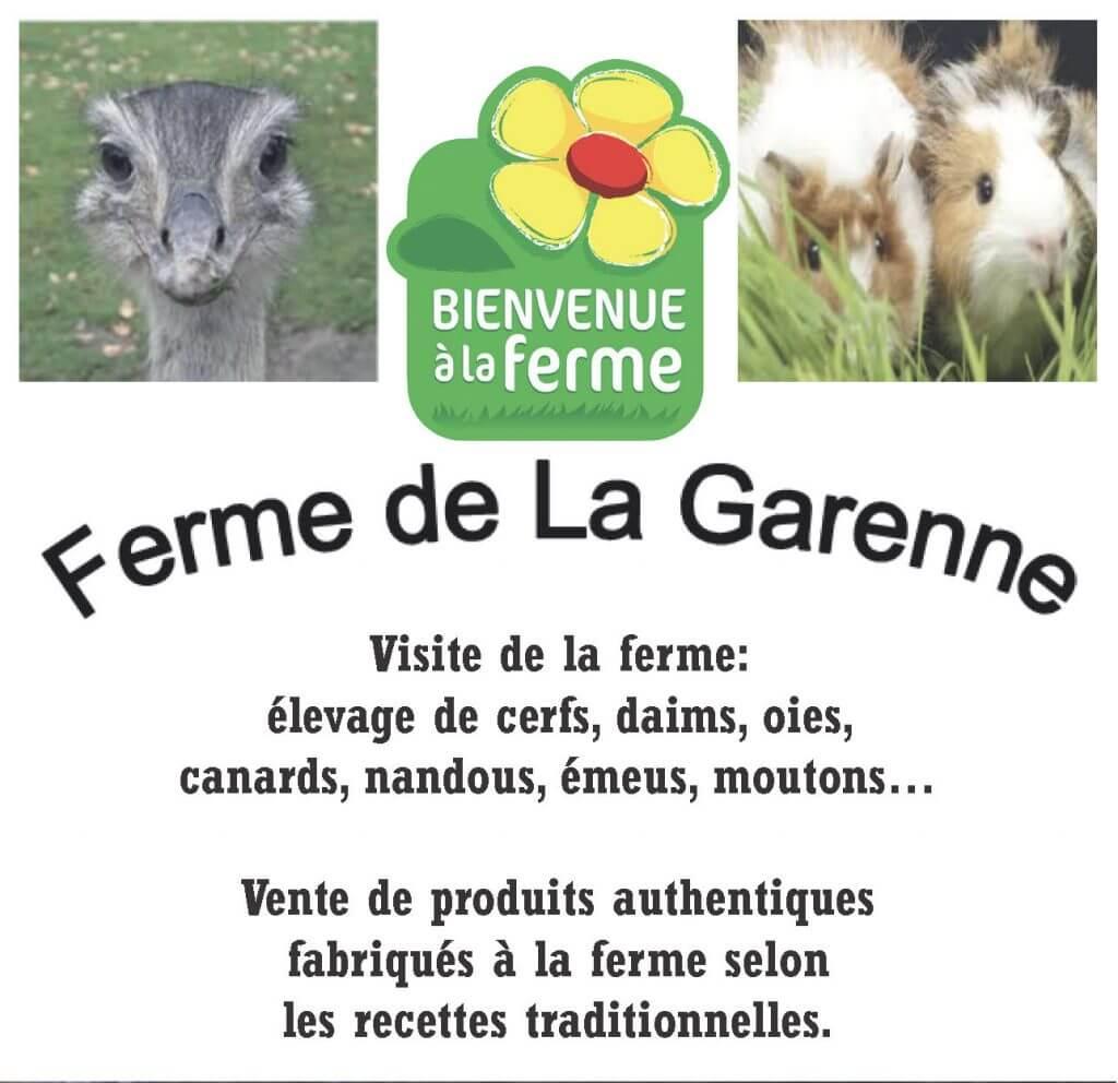 Farm productions: Sheep, geese, ducks, ornamental hens, deer, doe, Vietnamese pigs, swan, peacock, ostrich, emu...